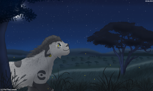 Looking at the stars - prize by M-WingedLioness