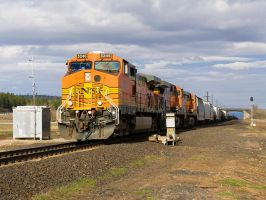 BNSF 5246 Coming Through by paploothelearned