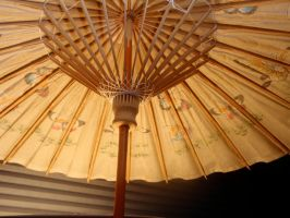 My Parasol 3 by DreamsWithinMe