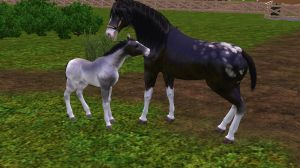 The Sims 3 Pets Scr. 3 by Lelizadith