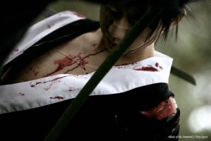 Blade of the immortal - Manji2 by ImMuze
