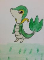 Draws and paints Snivy in art club by Dot-Returns