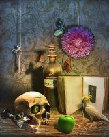 Still life with parrots by MarlaKinky
