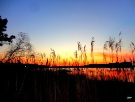 Just Another Sunset by DanPatrick