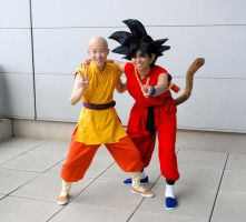DragonBall - Goku n Krillin by TechnoRanma