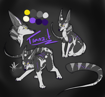 Tranzit Ref sheet by ashmaxtheswagger122