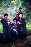 HP: The Marauders by ManaFromHeaven