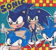 Happy 20th Birthday SONIC by rumiko18