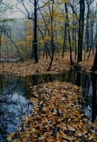 Premade Background 689 by AshenSorrow