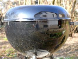Grill mirroring our home by lost-in-maze