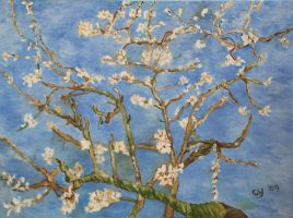 Almond Blossom in Oil by CarolynYM