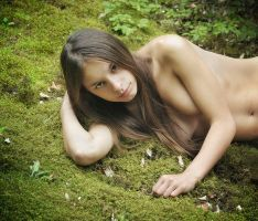 On the moss by ohlopkov