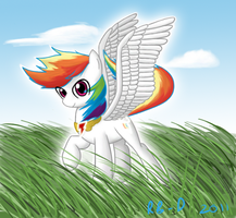 Super Rainbow Dash by RB-D