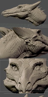 Base Model - Russet Dragon ZBrush Sculpture by LeccathuFurvicael