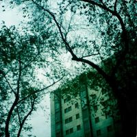 lomo 002 by fluorescent2892
