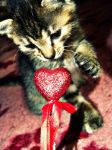 My love Kitty. by Freaks2