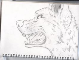 Random wolf drawing by LittleWhispurr