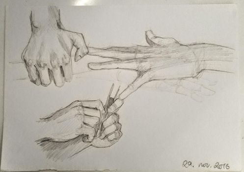 daily hand practice (29/30) by larissaschoeler