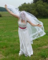 bride on a field - veil + wind 4 by indeed-stock