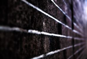 Brick Wall HDR by AlexCarata