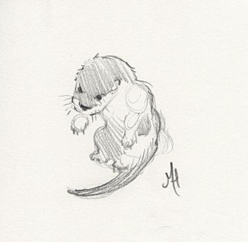 Otter Pup by MaryHighstreet