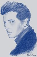 I love you Elvis by twinsister
