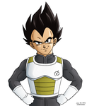 Commission 46: Vegeta by hirokada
