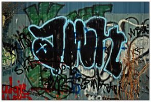 Graffiti 3 in Series of 6 by shawn529