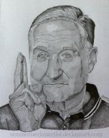 R.I.P Robin Williams by NotAnotherFanArtist