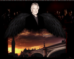 Alan Rickman - wallpaper 1 by transparentbird