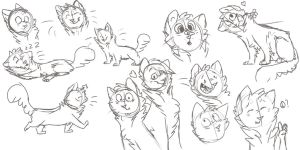 Troutpaw doodles by bedheadd