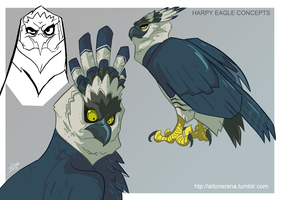 Harpy Eagle concepts by TerminAitor