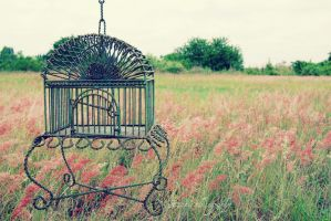 cage of dreams. by jenmarie123