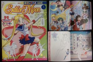 2011 Sailor Moon Coloring Book by SakkysSailormoonToys