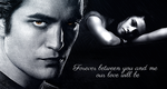 Edward   Bella  Forever by IllicitWriter