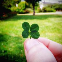Lucky four-leaf clover by Cappippuni