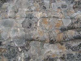Stone Texture 10 by vl2r
