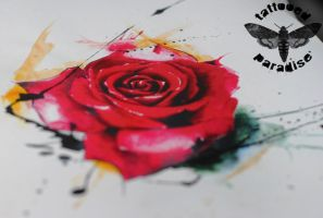 red rose watercolor by dopeindulgence