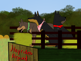 Kelpies on a Hayride! by Alcemistnv