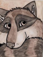 Ringo the Raccoon by Senwolf10