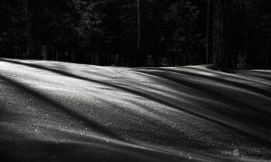 Shadows On The Snow by Nitrok