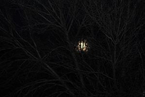 Eerie Moon by syrenemyst