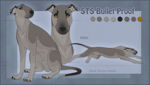 STS Dog- Bullet by ShockTherapyStables