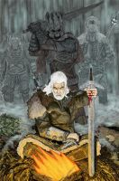 The Witcher by CONartist23