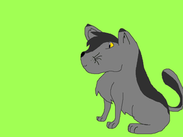 2.Graystripe by hawk722