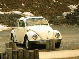 Vintage Beetle by Ange-d-etre