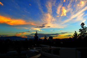 Sunset on Campus by Delta406