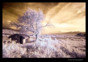 IR Dingalan 6 by kjaex