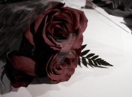 Faded Roses by thisfleshavenged