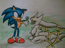 sonic the hedgehog and arceus by shadowhatesomochao